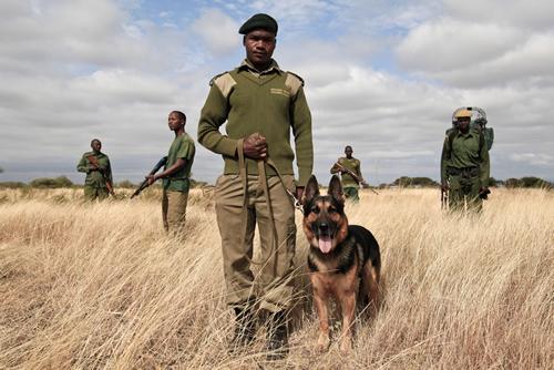 Anti-poaching-unit-Manyara Tab photo
